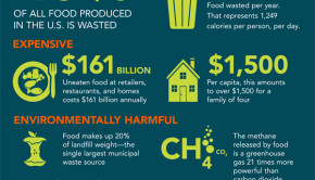 Congresswoman Chelli Pingree's Food Recovery Act aims to tackle food waste in the U.S.