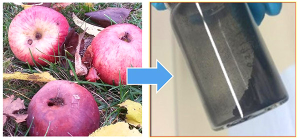 Who says batteries don't grow on trees? German researchers are working on a food waste battery that runs on waste from the apple processing industry.