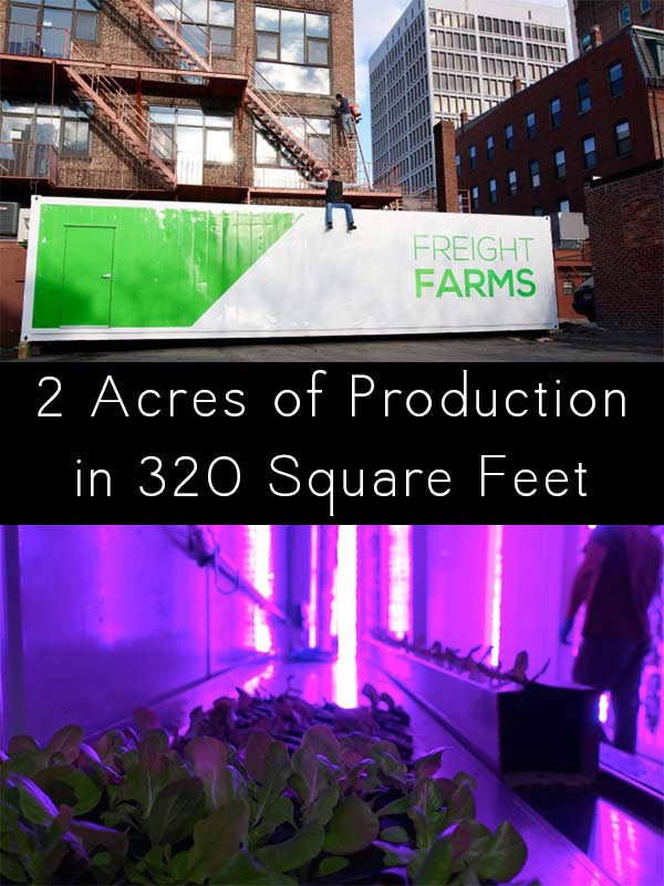 Meet the shipping container garden that produces 2 acres of food in 320 square feet!