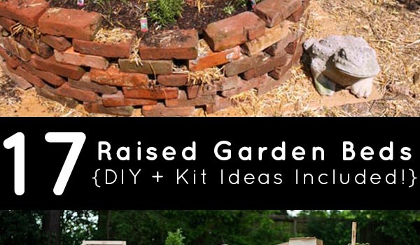 Whether you're a hard core DIYer or prefer a little help from a kit, we have got some stellar raised bed ideas for you!
