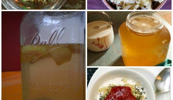 Homemade fermentation is the ultimate DIY project, and if you're not fermenting your foods yet, here are five easy home fermentation recipes to get you started.