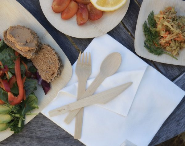 compostable dinnerware from bambu