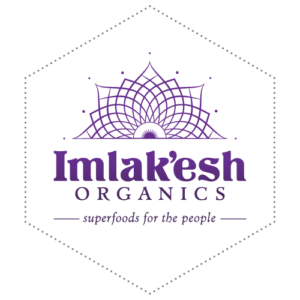 Imlak'esh Organics superfoods and snacks really impressed me at the Wanderlust Festival, and I'm so excited to tell you about them!