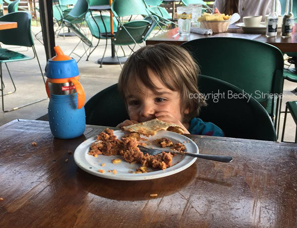 Is a vegan diet healthy for kids?